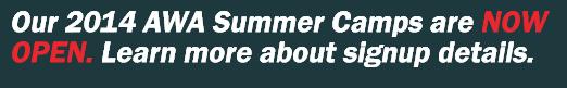 2014 summer camps